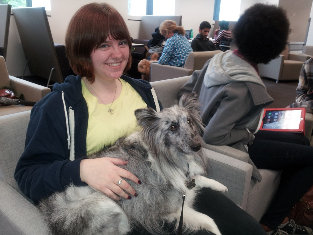 Therapy Dog wtih student