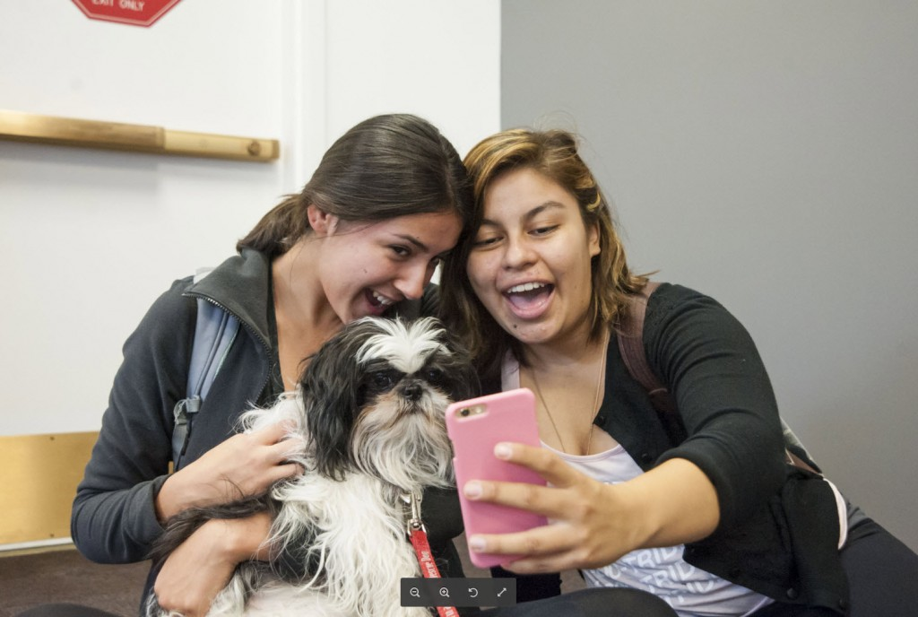 Girls taking their picture with a therapy dog