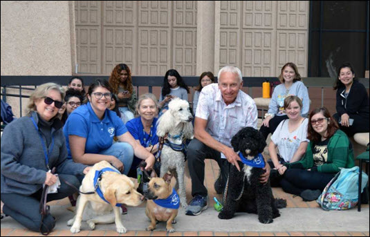 group of therapy dogs and students smiling