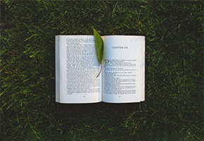 Book with leaf on it