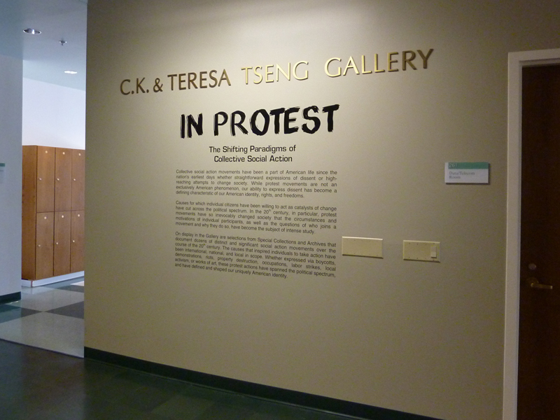 Introductory text for In Protest