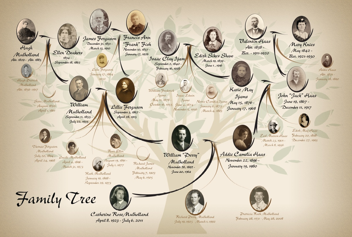 Family tree depicting the ancestors of Catherine Mulholland.