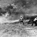 Fire fighters from Fire Station 75 work to extinguish flames in Sylmar, June 19, 1980