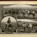 Selected pages from Cowboy Life. [F596 .C873 1880z]
