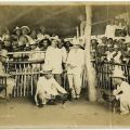 Photograph of men at a cockfight in Manila, ca. 1910. Donald Hiram Stilwell Photograph Collection