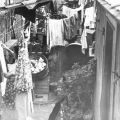 View of connected homes with hanging laundry.  This location is now occupied by William Mead Homes public housing project in Chinatown.