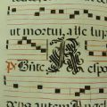 Another Decorative Initial