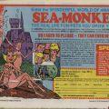 Advertisement for Sea Monkeys, May, 1979