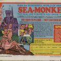 Advertisement for Sea Monkeys, May, 1979