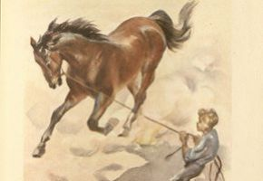 Illustration from The Red Pony