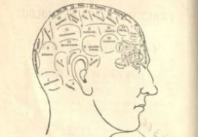 Phrenology chart in Matrimony: Or Phrenology and Physiology Applied to the Selection of Congenial Companions for Life: Including Directions to the Married for Living Together Affectionately and Happily, HQ31 .F775 1875