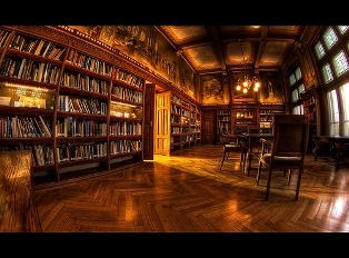 Fancy room full of books