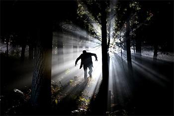 Frankenstein's Monster in the Woods
