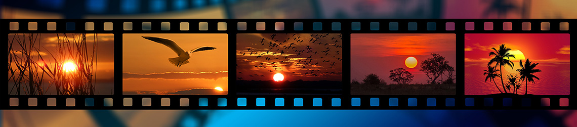 film reel with birds and the sun