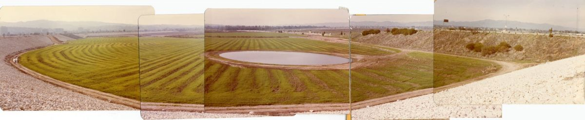 Panoramic view of pond in the Sepulveda Wildlife Reserve, February 4, 1980